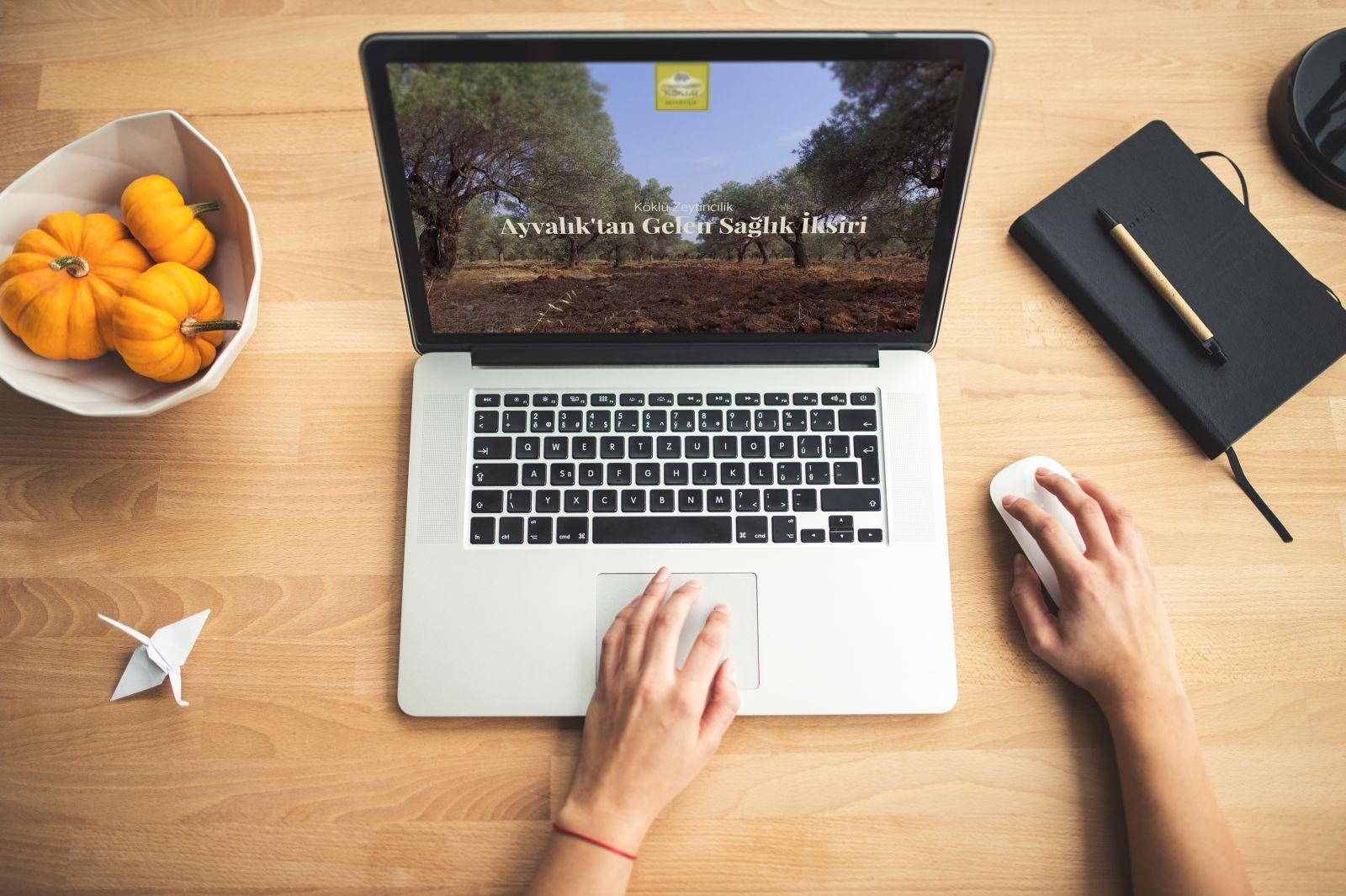 Köklü Zeytincilik'in Kurumsal Web Sitesini Oluşturduk